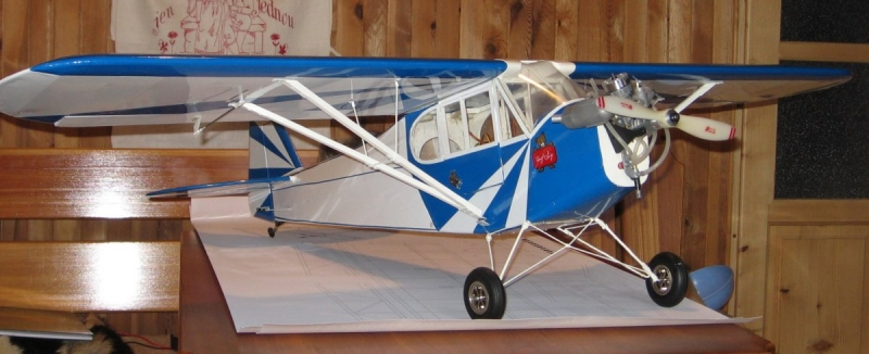 Piper J-3 clipped wing cub