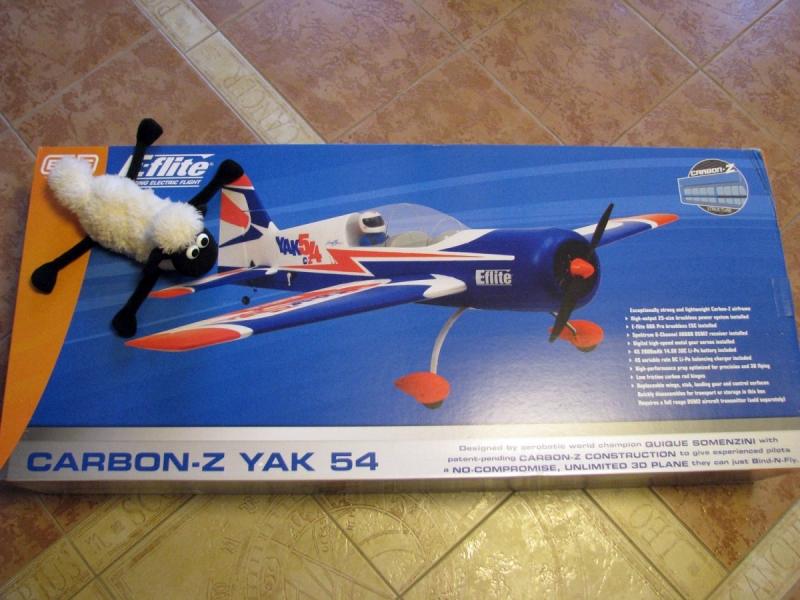 Yak 54 Carbon Z