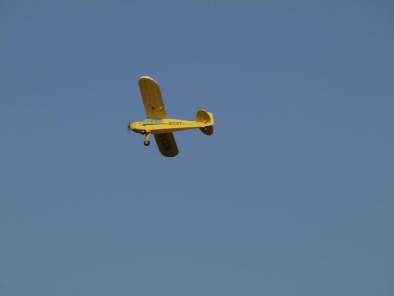 Piper Cub J-3C - PRODANO